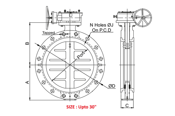 #alt_tagWafer Type Double Flange Butterfly Valve 2