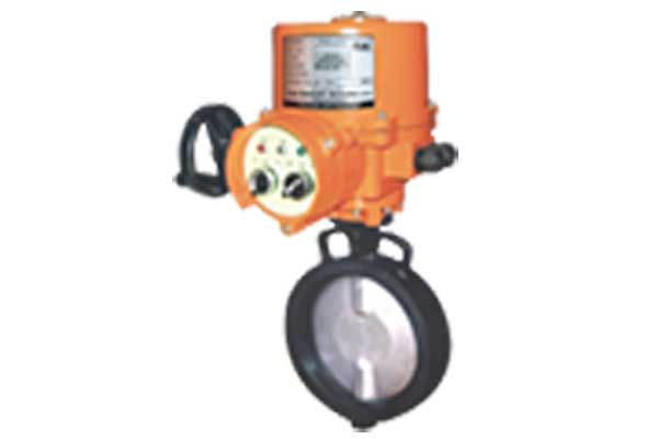 Manufacturer of electric actuator operated valves India