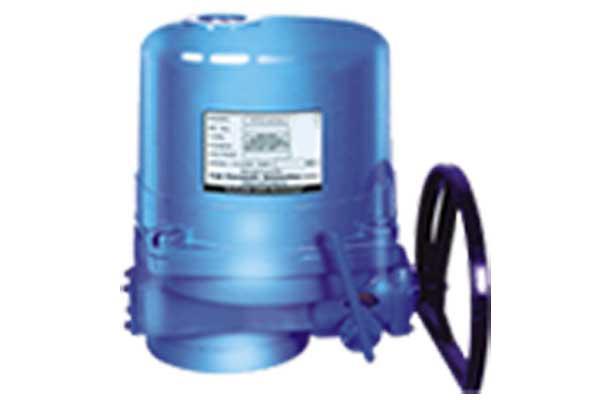 electric actuator valve