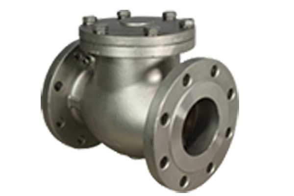 Swing Check Valve Manufacturers & Suppliers in India